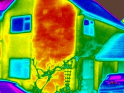 Thermal image from a domestic house