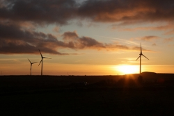 Windfarm with sun low over the horizon